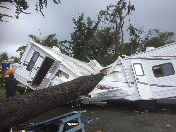 rv tree storm.JPG