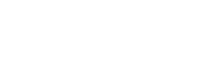 vision6.png