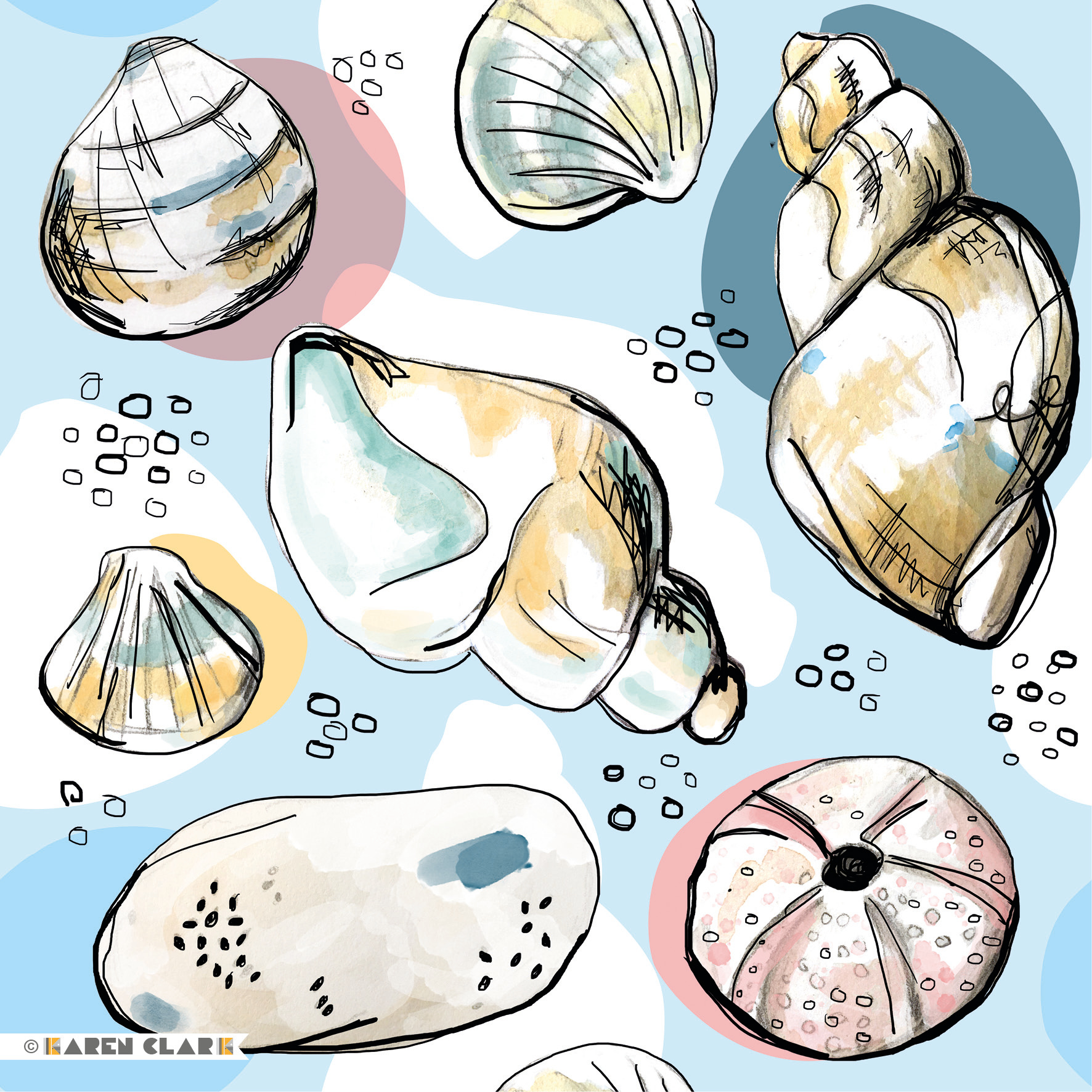 nautical shells