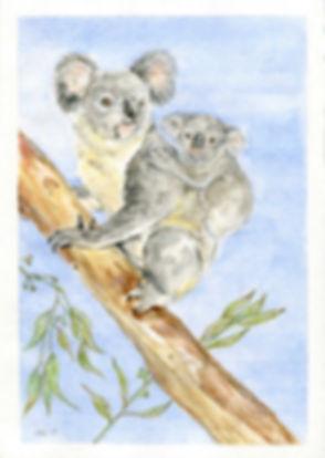 Koala and Baby.jpg
