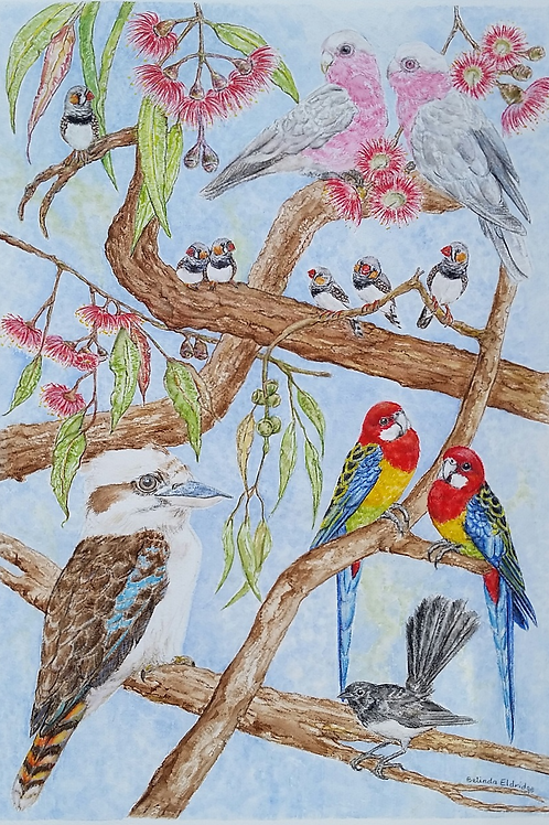 Australian Birds 2. Original