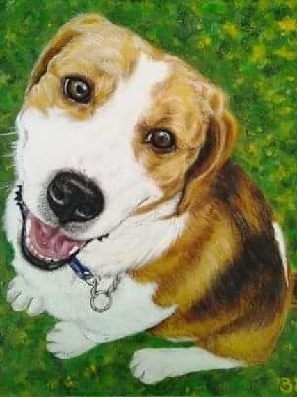 """Pet Portrait 10"""" x 12"""""""