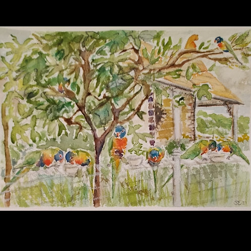 House of Birds 3