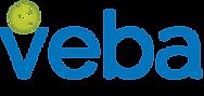 VEBA Logo Horizontal Gradient (Color) 10
