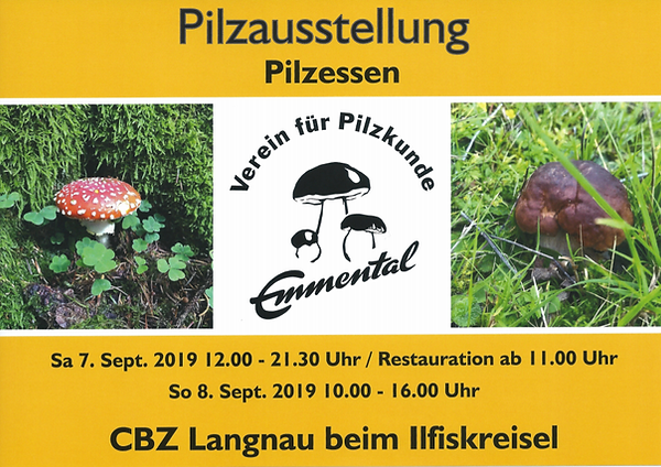 Ausstellung Langnau 2019.png
