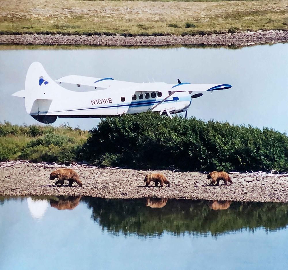 Emerald Air Service's first Otter
