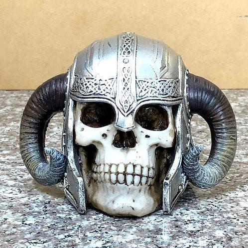 Skull Wearing Viking Helmet