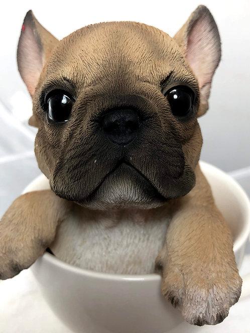 Medium French Bulldog in a Tea Cup