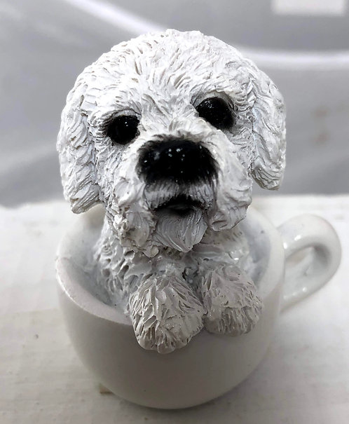 Mini Maltese in a Tea Cup