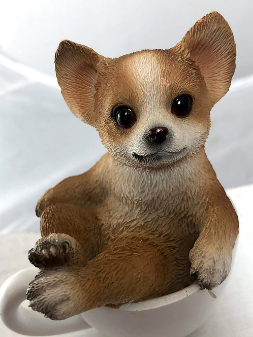 Small Chihuahua in a Tea Cup