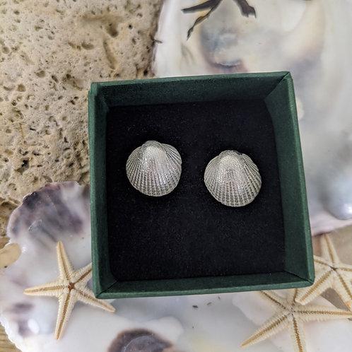 Cockle Shell Stud Earrings - Silver