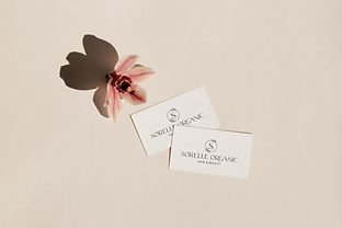 SORELLE ORGANIC HAIR & BEAUTY, BRANDING, COLLATERAL BUSINESS CARD MOCKUP