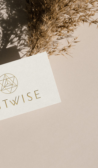GUTWISE, BRANDING, COLLATERAL, BUSINESS CARD
