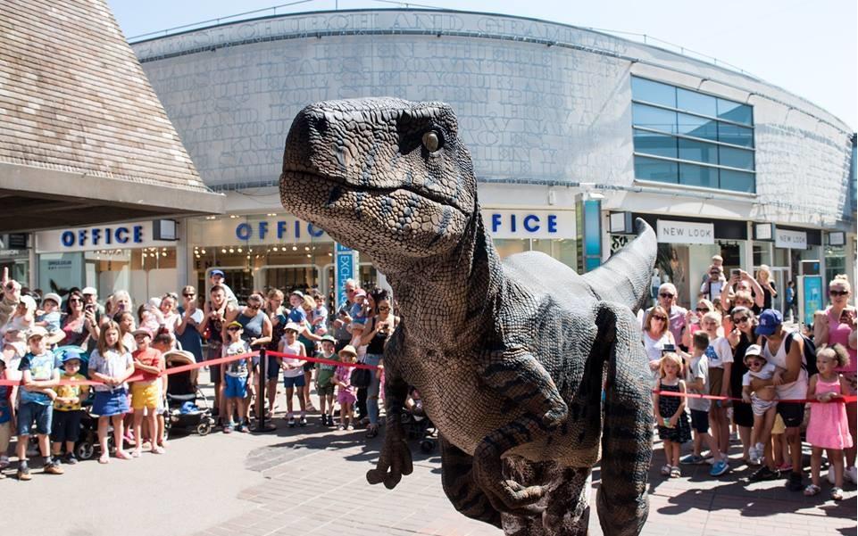 Hire a Raptor Dinosaur