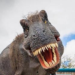 Hire a T Rex Dinosaur