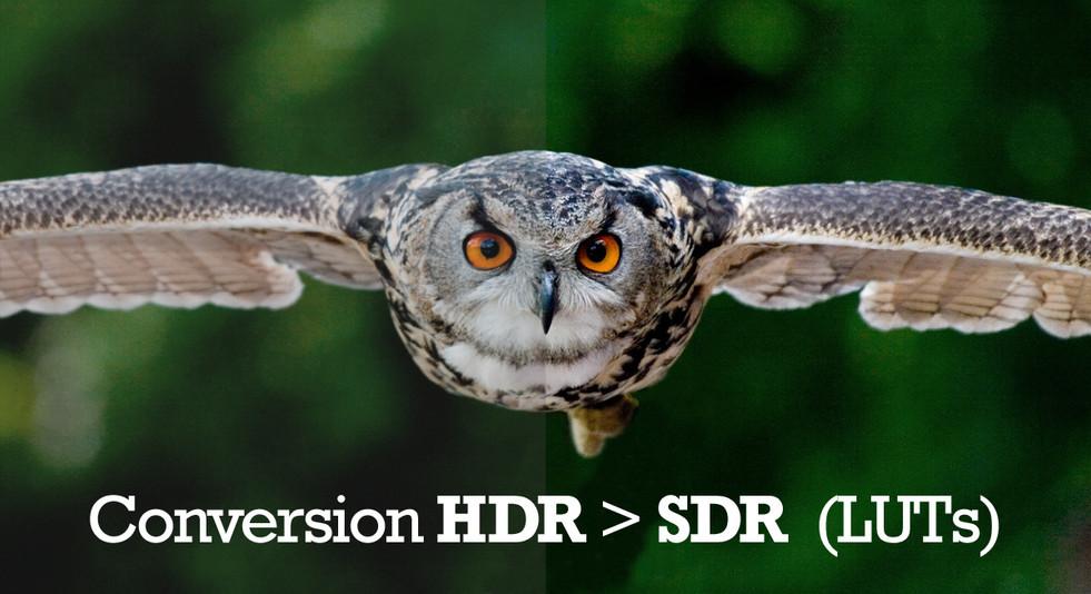 zappiti-4k-hdr-sdr-conversion-fr-1200x65
