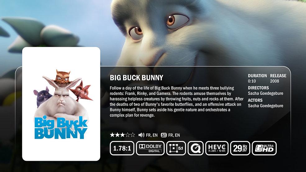 zappiti-video-big-buck-bunny-plot-classi