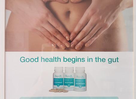 GUT HEALTH & YOUR BODY