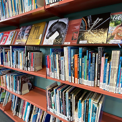 Auckland Secondary School Libraries
