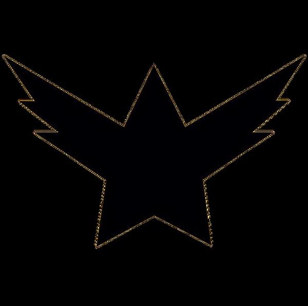 STARBIRD_LOGO_TRANSPARENT_BLACK.png