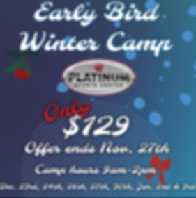 Winter Camp Flyer with Logo.jpg