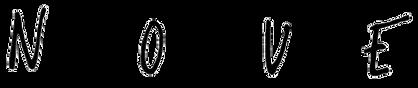 Logo NOUE noir.png