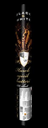 HAWK MISSIL.png