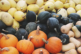 different types of squash-pexels.jpg