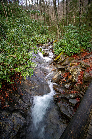 Stream flowing through rocks and wooded area in Smoky Mountains.