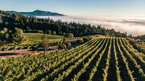 Jackson Family Wines Are Mountain-Grown