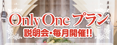ONleOneプラン.png
