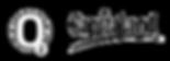 logo O2.png