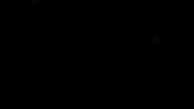 logo punk dragon.png