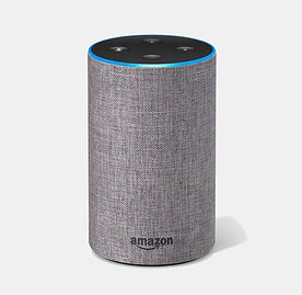 google home vs echo.jpg