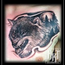 wolfoftheforest.jpg