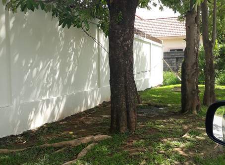 Painting your privacy wall in Phuket.