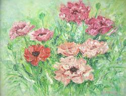 Poppy Patch 16x20