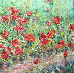 Poppies 8x8