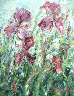 Three Irises 14x11