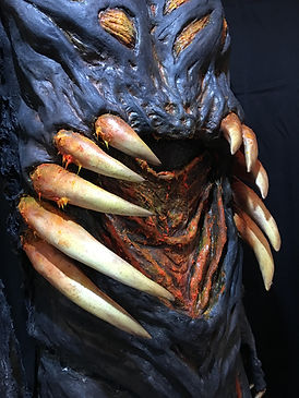 hospice close up stomach.jpg