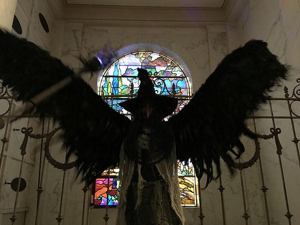 bird wings.jpg