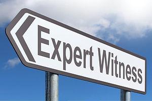 expert-witness.jpg