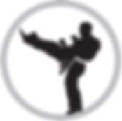 kids martial arts in Kalamazoo