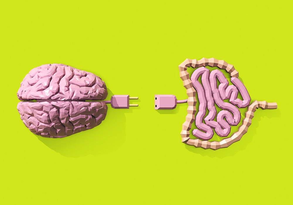 Conexão Cérebro Intestino