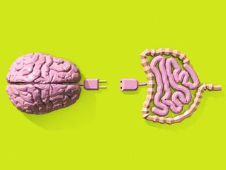 Conexão Intestino Cérebro