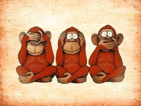 #96 - Monkey see Monkey do