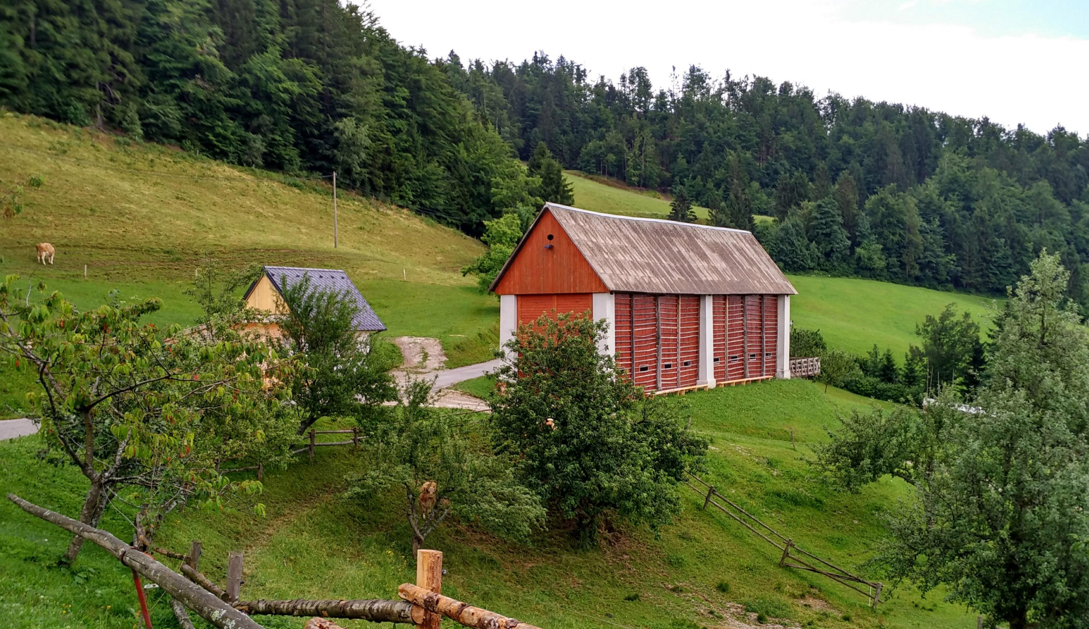 Kmetija Na Lanišah, kozolec