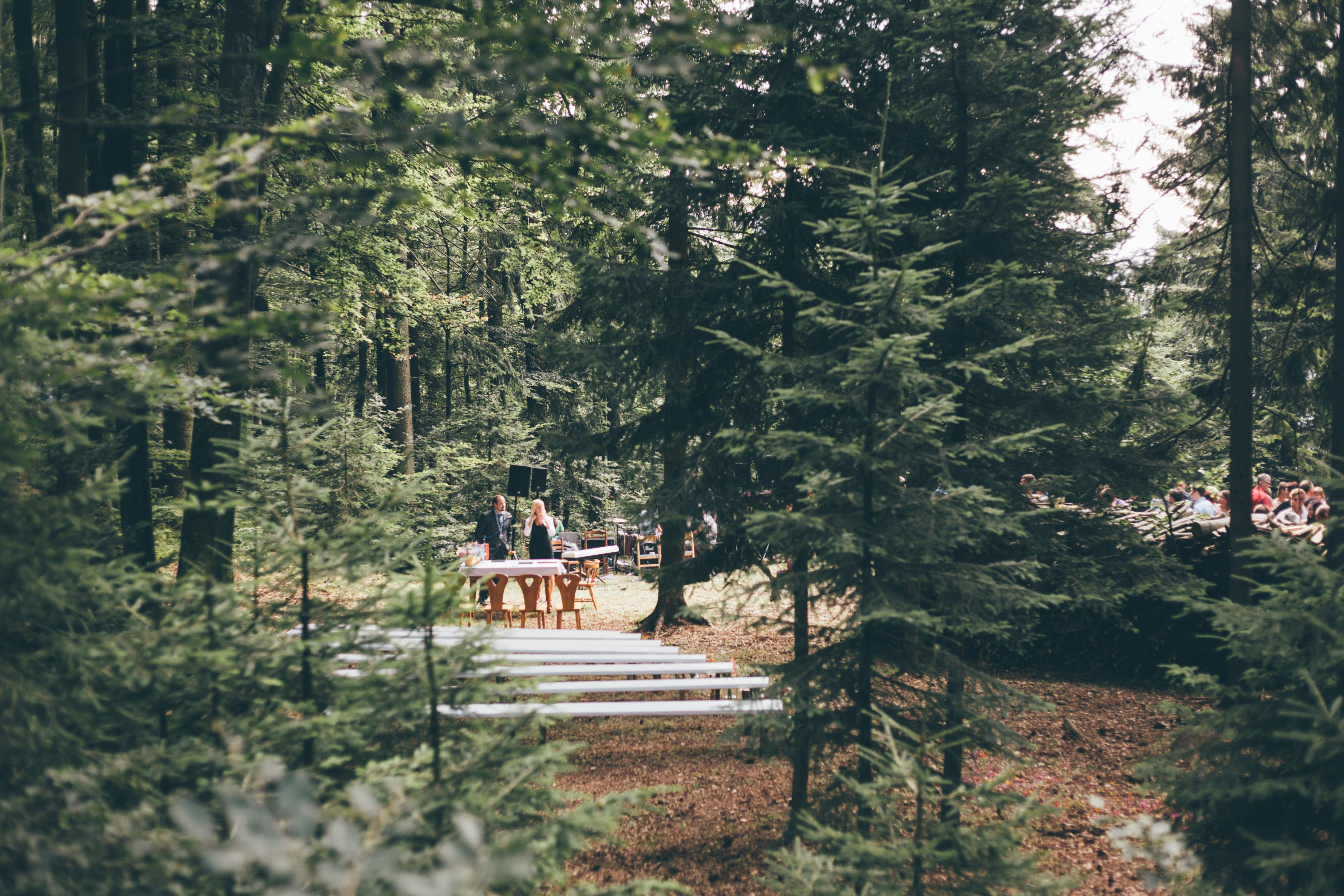 Poroka v naravi