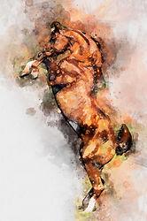 rearing-horse-in-watercolor-1500px.jpg