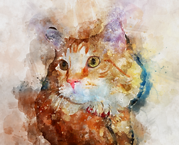Let us convert you photo to a magical watercolor for only $19.50 - www.watercolor.photos